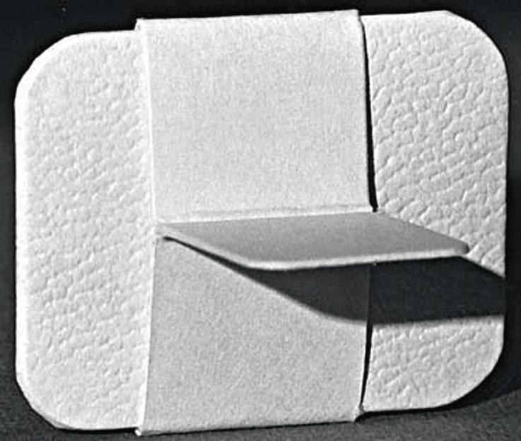 Рис. 3. Пленка в специальном чехле для проведения съемки в технике bitewing (репродукция из S. C. White, M. J. Pharoah, Oral Radiology Principles and Interpretation, 2012).