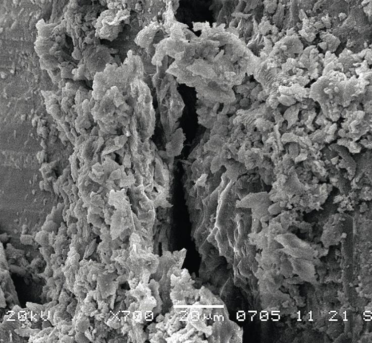 Рис. 4. РЭМ эмалево-композитной границы при полимеризационном стрессе.