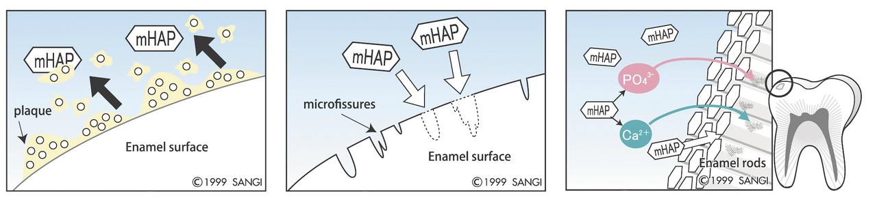 Рис. 6. Три основные функции Nano в качестве активного противокариесного агента: удаление налета, восстановление поверхности эмали, реминерализация.