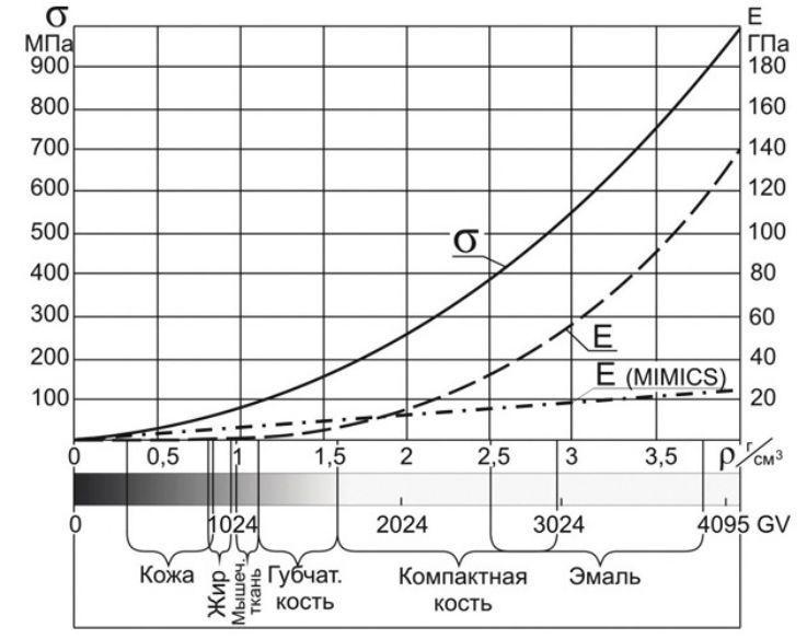 Рис. 3. Значения модуля упругости (по разным источникам), предела прочности и плотности тканей в зависимости от оттенков серого.